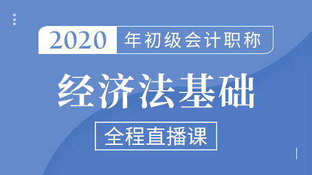 2020年初级经济法串讲强化班第五讲