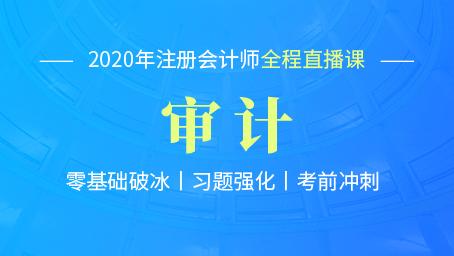 2020年注会审计考前冲刺第二讲