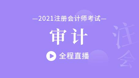 2021年注会审计习题强化班第三讲
