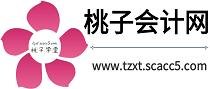 桃子会计网